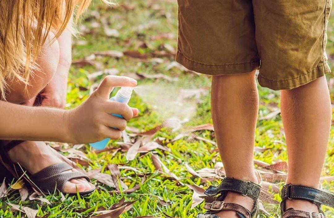 Как защититься от насекомых своими руками и без химии